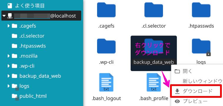ファイルマネージャーに保存された復元データをダウンロードする