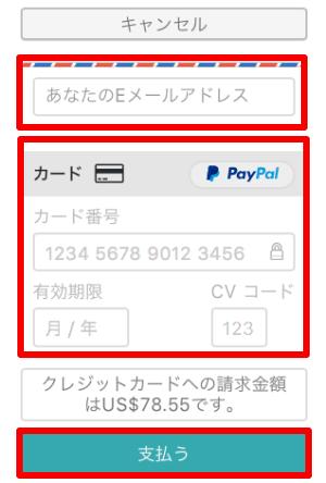メールアドレス、支払情報を入力