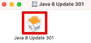 Java8 Update 301を実行する